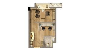 招商兰溪谷 1室1厅1卫 36平方米 精装