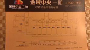 金域中央广场 1室1厅 30平方米 毛坯